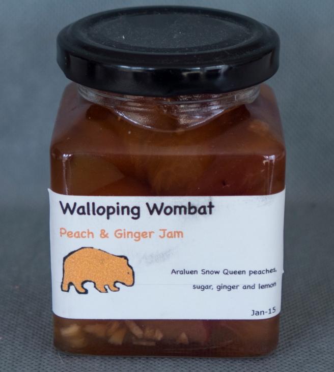 Wombat Jam_20160329_0003 copy